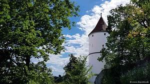 Biberacher Schuetzenfest 2020 Gigelberg Stelen 60